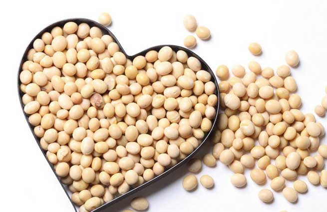 soybean_proteen